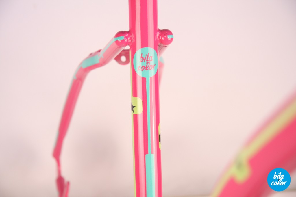 Bicicleta_pegas_limited_bitacolor_4