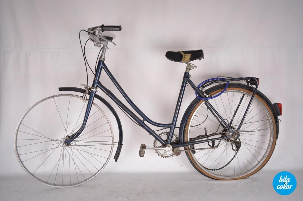 Bicicleta_rembrand_roz_bitacolor_1