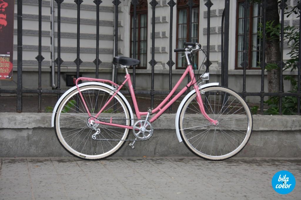 Bicicleta_rembrand_roz_bitacolor_10