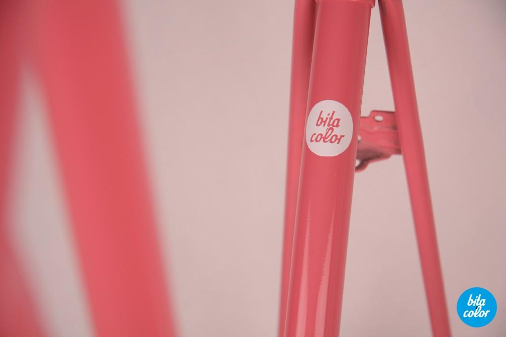 Bicicleta_rembrand_roz_bitacolor_4