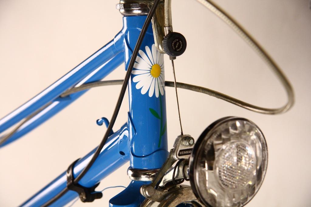 Bicicicleta_de_dama_germania_vopsita_albastru_personalizare_bitacolor10