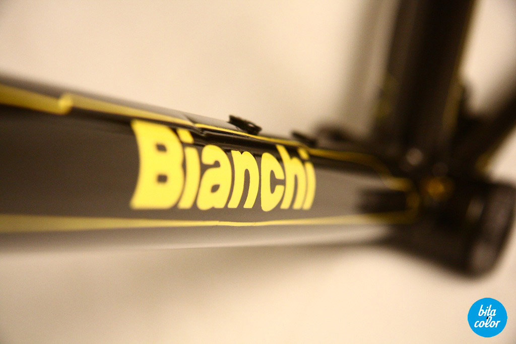 Bianchi_electric_custom_paintjob_bitacolor13