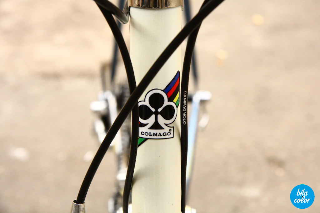 Colnago_master_1984_Repaint_Campagnolo_Brooks_26
