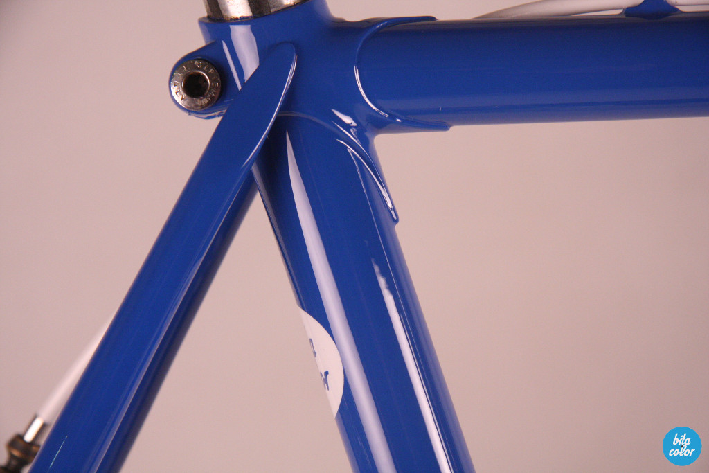 Elias_france_flag_campagnolo_custompaint_bitacolor_12