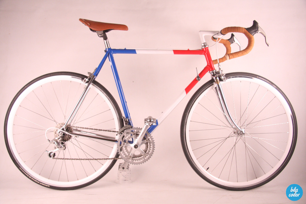 Elias_france_flag_campagnolo_custompaint_bitacolor_3