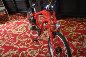Bicicleta lui Pako